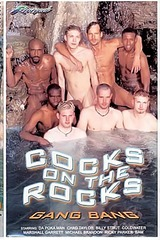 Cocks On The Rocks