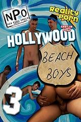 Hollywood Beach Boys 3