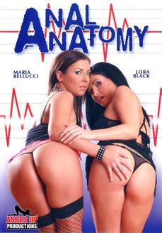 Porno video: Anal Anatomy