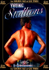 The Golden Age Of Gay Porn: Young Stallions