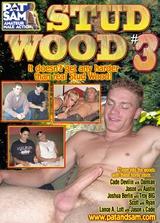 Stud Wood 3